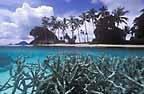 Amphlette Island, Papua New Guinea